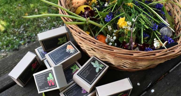 Saponette erbe e fiori alpiflora